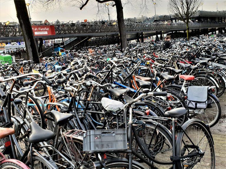 A Post-Coronavirus Economy: Amsterdam's Doughnut Economy Project