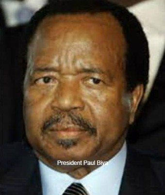 Cameroon: Call for Ceasefire from International Group of Dignitaries