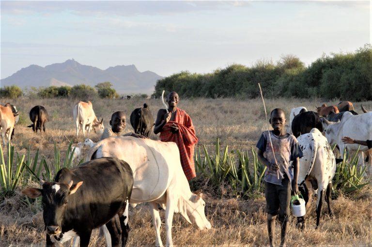 Karamoja, Uganda: A Student's Experience in a Traditional Pastoralist Environment