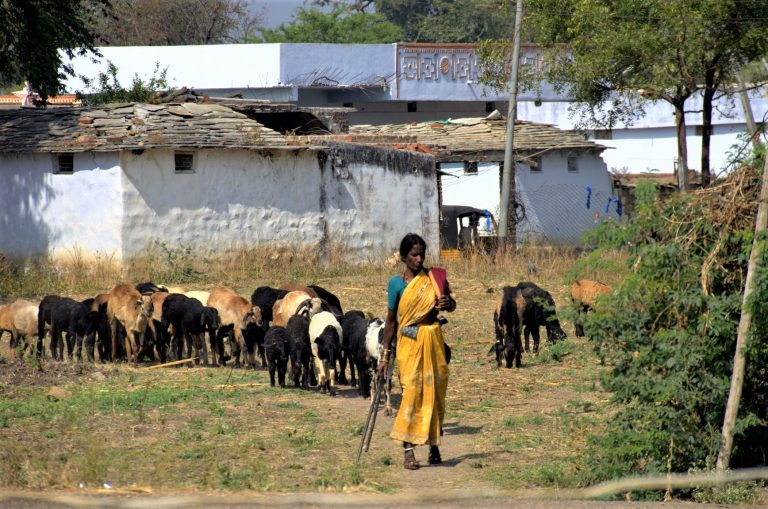 Andhra Pradesh, India: Chief Minister in Defence of Dalits and Minorities