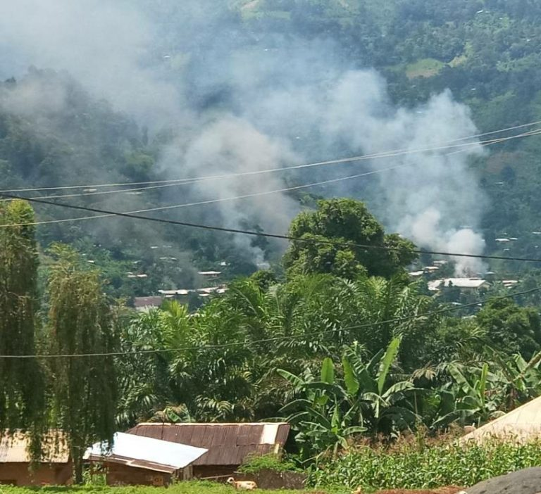 Cameroon: No End in Sight to the Conflict