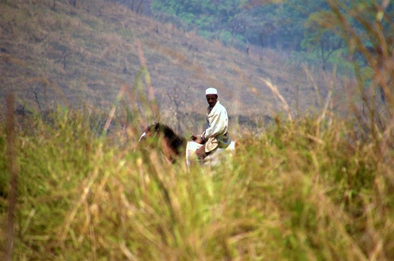 Cameroon: Fulani Herdsmen Actively Join in Conflict