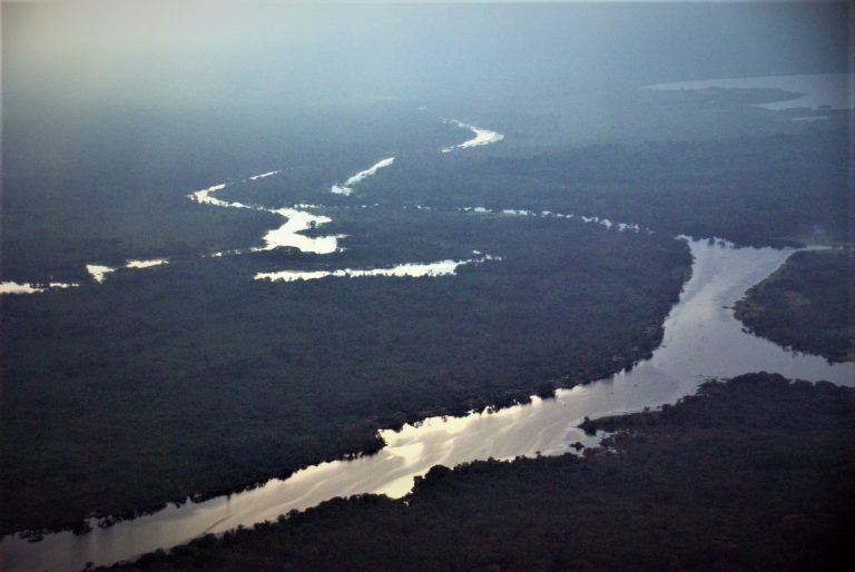 DR Congo: Government Lifts Moratorium on Forest Exploitation